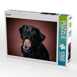 Labrador Lege-Größe 64 x 48 cm Foto-Puzzle Bild von Schöberlfoto-ART Puzzle
