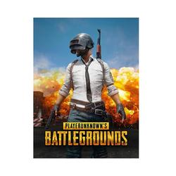 Playerunknown's Battlegrounds (PC & Mac)