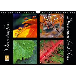 Wassertropfen - Diamanten des Lebens (Wandkalender 2021 DIN A4 quer)