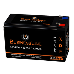 Ersatzbatterie Lithium (LiFePO4 Akku) 12V 12Ah mit BMS