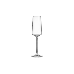 BUTLERS Champagnerglas WINE & DINE Champagnerflöte 250 ml, 6er-Set