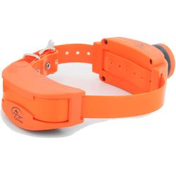 SportDog Zusatz Hundehalsband / elektrisches Erziehungshalsband