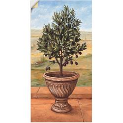 Artland Wandbild Olivenbaum, Pflanzen (1 Stück) 20 cm x 40 cm
