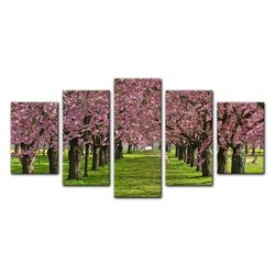 Bilderdepot24 Leinwandbild, Leinwandbild - Kirschblüten 100 cm x 50 cm