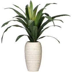 Künstliche Zimmerpflanze Dracaena Dracaena, Creativ green, Höhe 90 cm, in Keramikvase