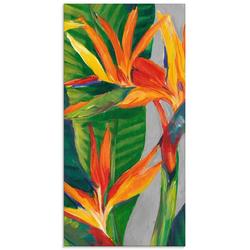 Artland Glasbild Paradiesvogel II, Pflanzen (1 Stück) 50 cm x 100 cm x 1,1 cm