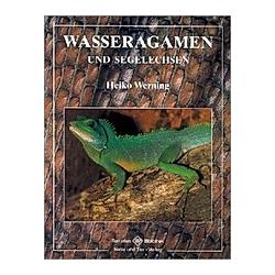 Wasseragamen und Segelechsen. Heiko Werning  - Buch