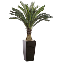 Kunstpalme Cycaspalme Palme, Creativ green, Höhe 130 cm, im Kunststofftopf