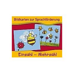Einzahl - Mehrzahl (Bildkarten). Redaktionsteam Verlag an der Ruhr  - Buch