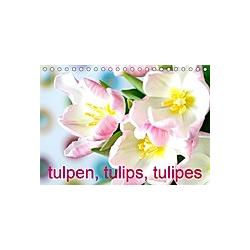 Tulpen, Tulips, Tulipes (Tischkalender 2021 DIN A5 quer)