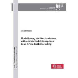 Modellierung der Mechanismen während der Induktionsphase beim Kristallisationsfouling: eBook von
