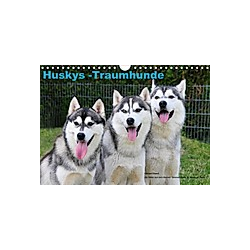 Huskys - Traumhunde (Wandkalender 2021 DIN A4 quer)