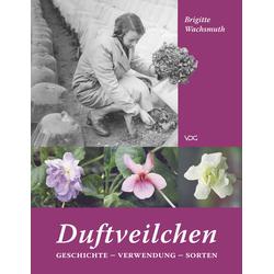 Duftveilchen als Buch von Brigitte Wachsmuth