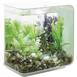 Oase 72030 Aquarium 15l mit LED-Beleuchtung