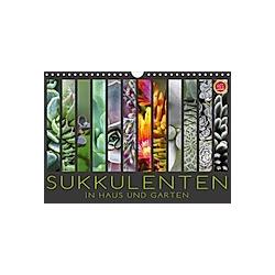 Sukkulenten in Haus und Garten (Wandkalender 2021 DIN A4 quer)