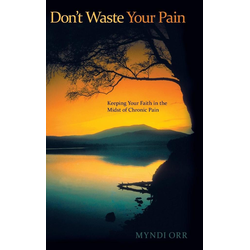 Don't Waste Your Pain als Buch von Myndi Orr