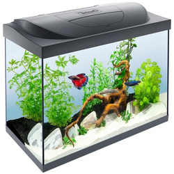 Tetra Starter Line Aquarium LED 80L
