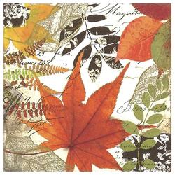 Linoows Papierserviette 20 Servietten, Herbstblätter, schönes buntes Herbs, Motiv Herbstblätter, schönes buntes Herbslaub
