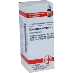 EQUISETUM ARVENSE D 3 Globuli 10 g