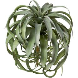 Kunstpflanze Tillandsie, Creativ green, Höhe 40 cm