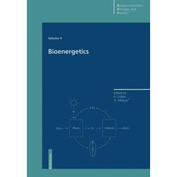 Bioenergetics als Buch von