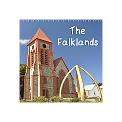 The Falklands (Wall Calendar 2021 300 × 300 mm Square)
