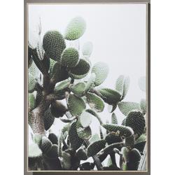 Bild KAKTEEN(BHT 102x142x4 cm) Casa Nova
