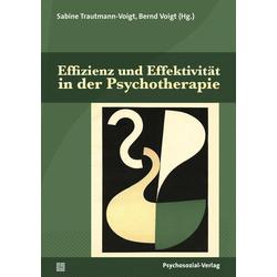 Effizienz und Effektivität in der Psychotherapie: Buch von