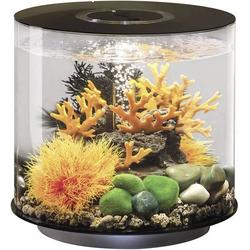 Oase 72062 Aquarium 15l mit LED-Beleuchtung