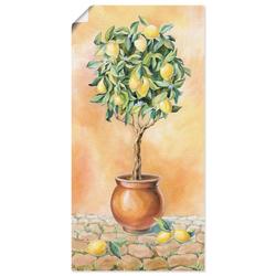 Artland Wandbild Zitronenbaum I, Pflanzen (1 Stück) 30 cm x 60 cm