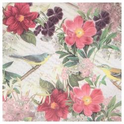 STAR Seidenpapier, Seidenpapier 50x75cm, 25 Bogen rosa