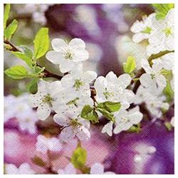 Linoows Papierserviette 20 Servietten, Frühling, Ostern, Blühender Kirschz, Motiv Frühling, Ostern, Blühender Kirschzweig