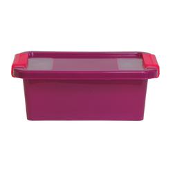 ONDIS24 Aufbewahrungsbox Aufbewahrungsbox mit Deckel Klipp Box XS Lagerbox 2,5 Liter lila
