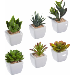Kunstpflanze, Höhe 8 cm