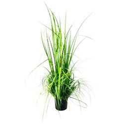 Kunstpflanze Gras im Topf Gras, I.GE.A., Höhe 150 cm grün