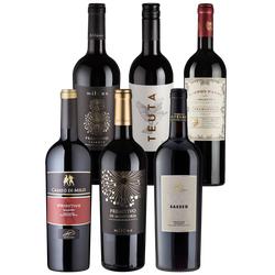 6er-Paket Primitivo Delizioso - Weinpakete