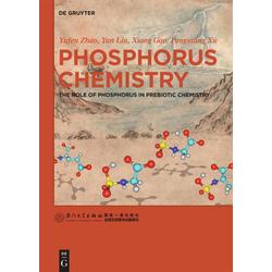 Phosphorus Chemistry als Buch von Yufen Zhao/ Yan Liu/ Xiang Gao/ Pengxiang Xu