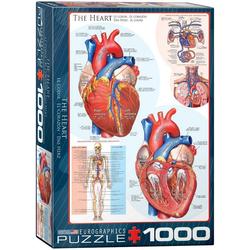 empireposter Puzzle Das menschliche Herz - Anatomie Puzzle - 1000 Teile Puzzle im Format 68x48 cm, 1000 Puzzleteile