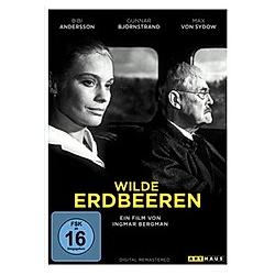 Wilde Erdbeeren - DVD  Filme