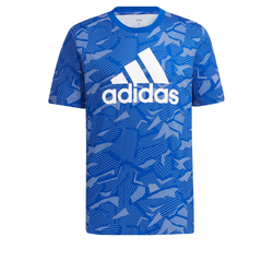 ADIDAS PERFORMANCE Herren T-Shirt blau