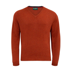 Alan Paine Streetly Lambswool-Pullover V-neck - tiger