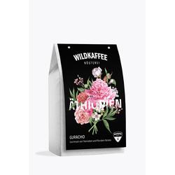 Wildkaffee Äthiopien Guracho 1kg
