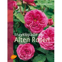 Enzyklopädie der Alten Rosen als Buch von Francois Joyaux