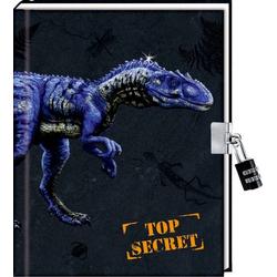 Coppenrath T-Rex Tagebuch Top Secret m. Schloß