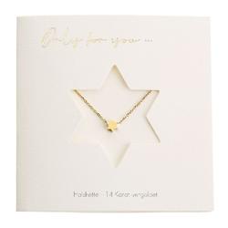 Halskette - Only for You - Stern - 14 Karat vergoldet