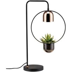 Paulmann Pflanzenlampe Fanja 18cm 230V GU10 20W EEK: abhängig v. Leuchtmittel (A++ - E) 1St.