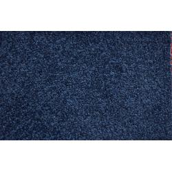 ANDIAMO Teppichboden Ines, Breite 400 cm, Meterware blau