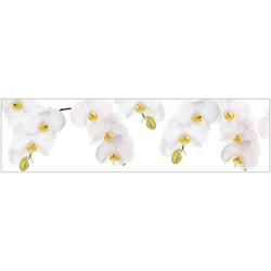 Küchenrückwand - Spritzschutz profix, Orchidee weiß, 220x60 cm weiß