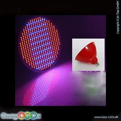 LED E27 Pflanzenlampe 35 Watt rot/blau