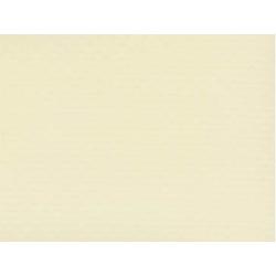 RENOLIT ALKORPLAN Trittschutzfolie 1,65 x 12,60 m 20,29 m² 1,8 mm sand